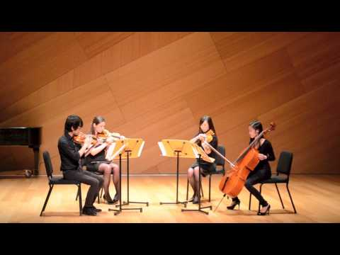 Thunderstorm: for String Quartet