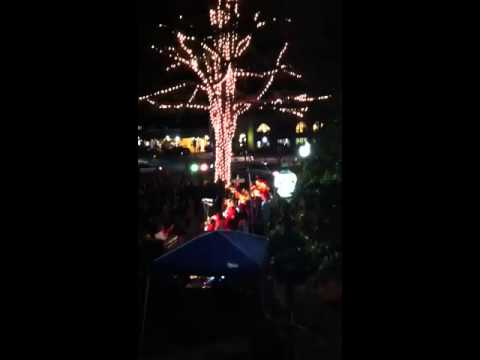 Huff Choir at Tree Lighting Ceremony